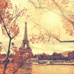 4710 - Eiffel Tower Autumn Leav