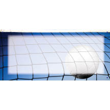 1459 - Volleyball In Net