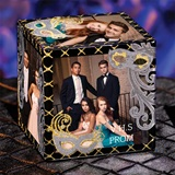 Silver Masques Photo Cube