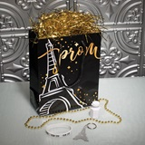 Party in Paris Swag Bag
