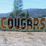 Cougars Fence Decorating Kit