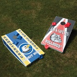 Custom Bean Bag Toss Game