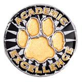 Academic Excellence Award Pin - Silver/Gold Paw