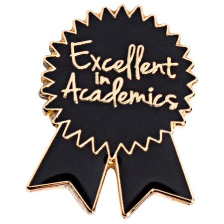 Excellent in Academics Award Pin