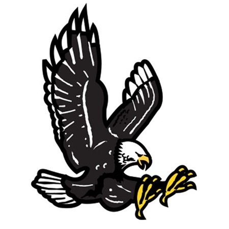 Black Eagle Temporary Tattoos