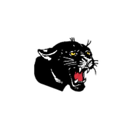 Panther Head Temporary Tattoos