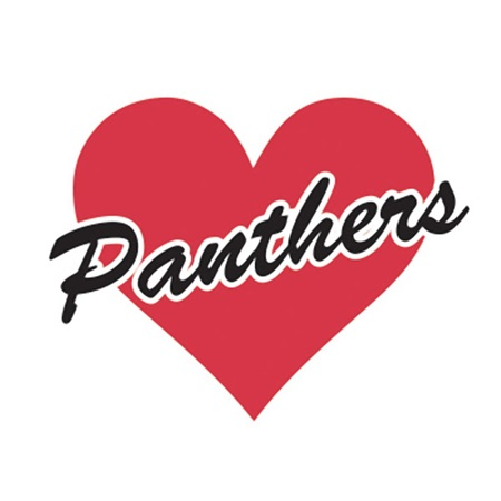 Red Heart/Panthers Waterless Tattoos