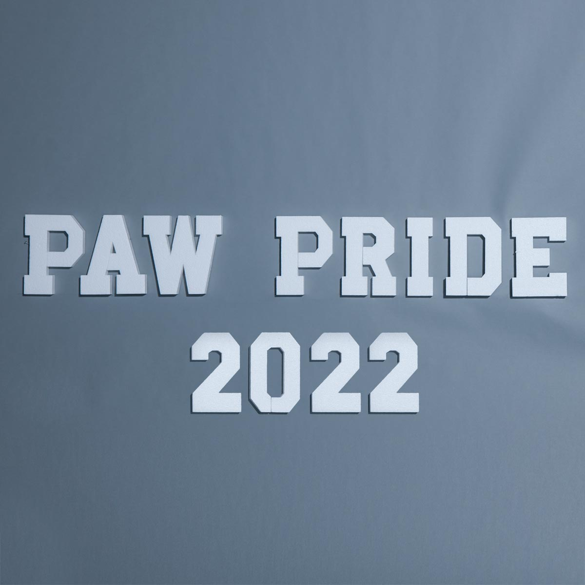 Paw Pride Letters Parade Float Kit