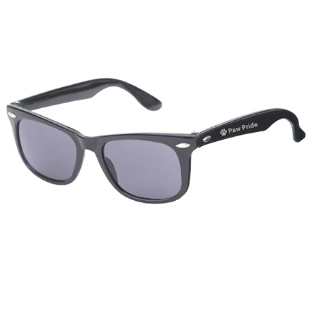 Black Sunglasses With Silver Accents