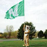 Green Custom 10' Cheer Flag