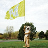 Yellow Custom 10' Cheer Flag