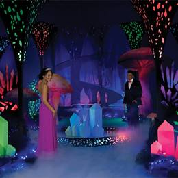 Crystal Forest Complete Prom Theme
