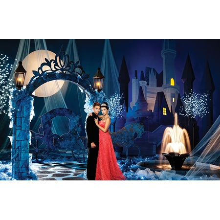 Fairy Tale Magic Complete Prom Theme