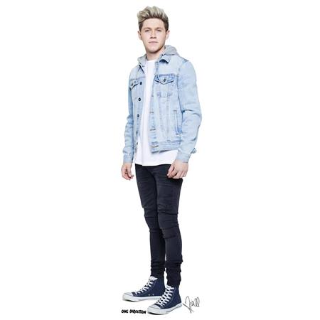 Niall One-Direction Stand-Up