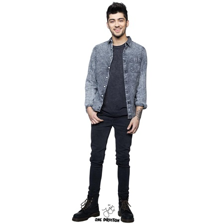 Zayn One-Direction Stand-Up