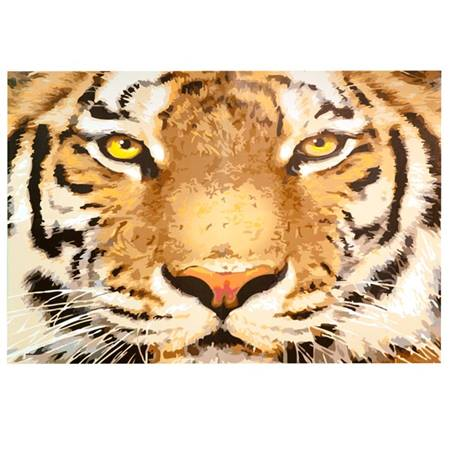 Tiger Tiger Burning Bright Mural Kit
