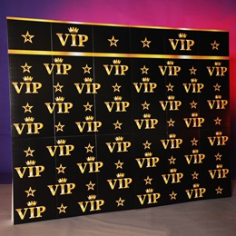 VIP Star Treatment Backdrop Kit