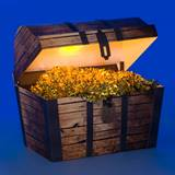 Treasures of the Sea Chest Kit