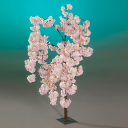 Short Pink Wisteria Tree Kit