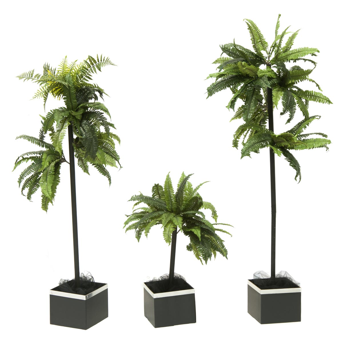 Have the Time of Your Life Trees Kit (set of 3)