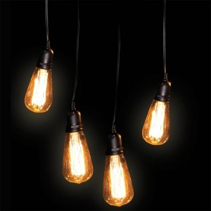 AP_Vintage Edison Lights