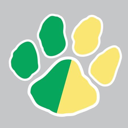 Waterless Tattoo - Green/Gold Paw